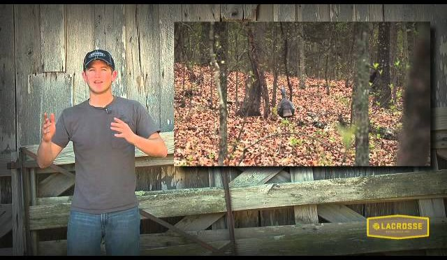 Food Plot Tips And Turkey Hunting: One Last Strutter For A Big Finish!