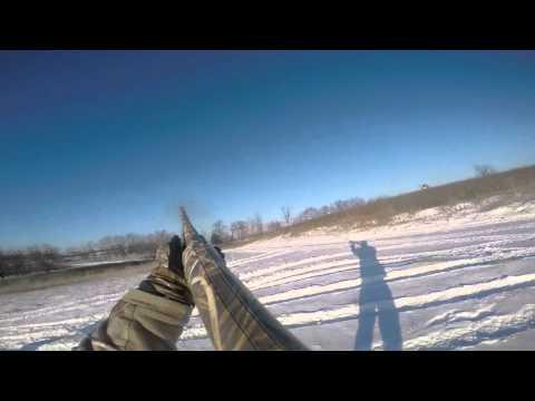 go pro pheasant hunt