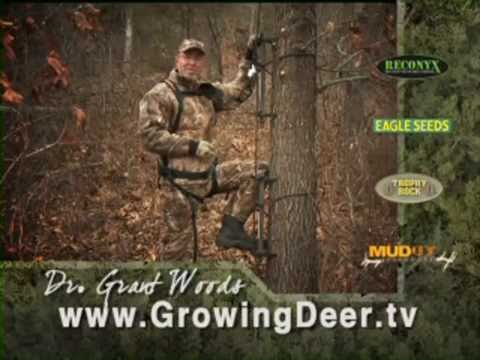How To Be Safe In the Deer Stand