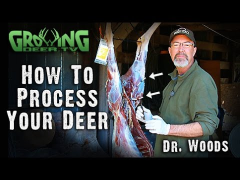 Hunting Whitetails: Be Ready Before The Shot