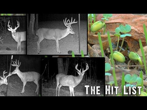 Introducing Our Big Buck Hit List For Deer Hunting 2013
