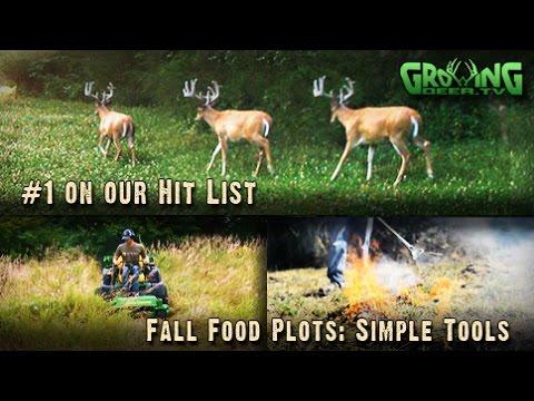 Let's Get Ready For Deer Season! The Biggest  Bucks, Food Plots, Tree Plots