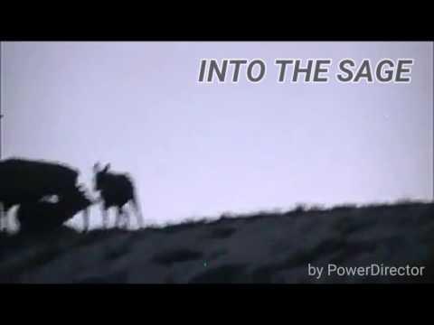Little elk hunting intro