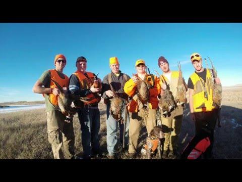 North Dakota Pheasant Hunting 2015