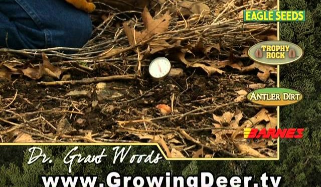 The Most Important Tip For Planting Food Plots