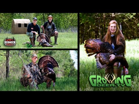 Turkey Hunting: Changing Strategies Pays Off, 3 Birds Down