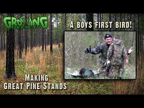Turkey Hunting In The Pines