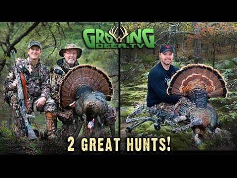 Turkey Hunting On The Move! 2 (Two) Exciting Hunts!