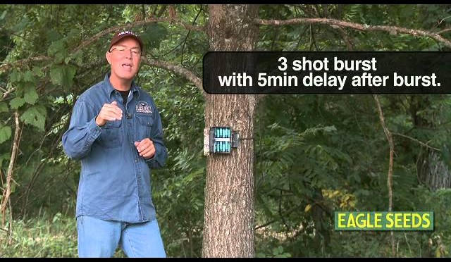 Whitetail DEER Hunting: Tips For A Great TRAIL CAMERA Survey by GrowingDeer.tv