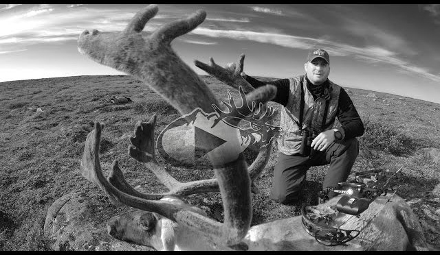 Arctic Caribou Hunt with Guy Eastman