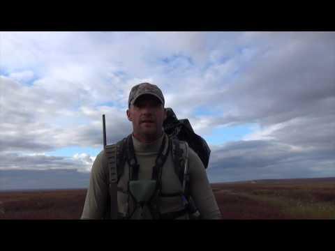 Arrowhead Outfitters– Caribou Hunt