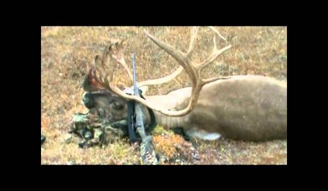 Brooks Range Alaska Caribou Hunt – Part Two