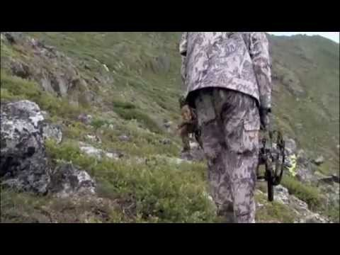 Caribou Bowhunting in Greenland