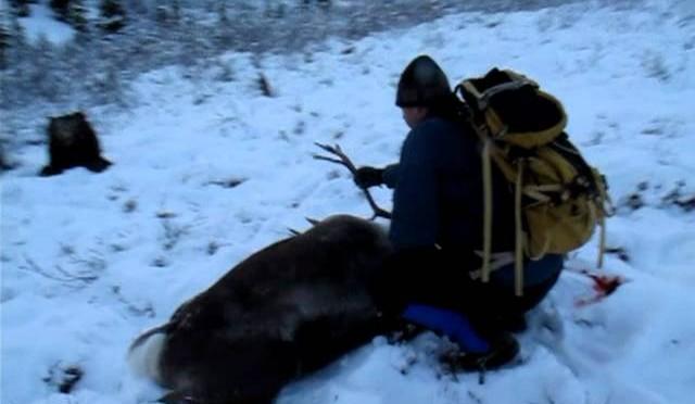 Craigs First Caribou Hunt