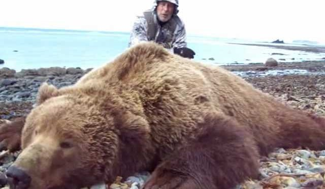 Deltana Outfitters – Alaska Bear, Sheep, Caribou Hunts