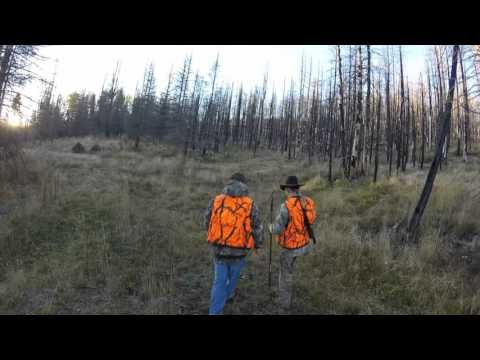 Elk Hunting on the Valles Caldera in New Mexico with Adolph Herrera