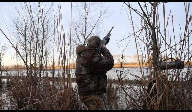GSO S17 E12 Lucky Duck