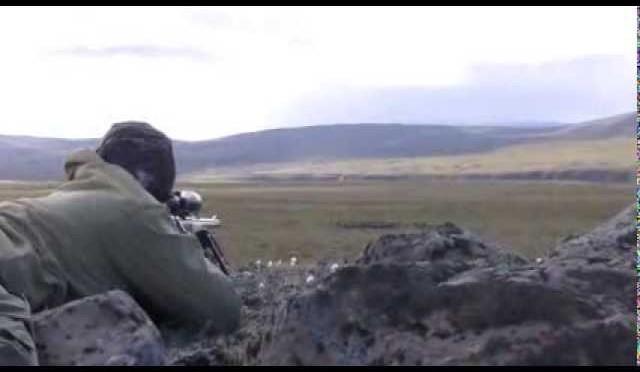 Hreindýraveiði 2010 (Caribou Hunting)