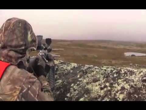 Hunting Connection  – Kelbly's Rifles – Jack Hume Adventures Caribou Hunt with Ian and John