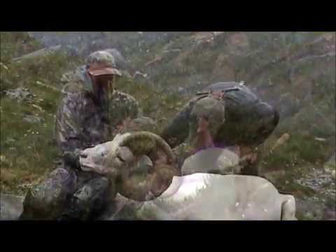 Hunting Dall Sheep, Caribou, Moose with Arctic Red River Outfitters, NWT, Canada #4