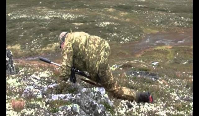 Jakt på villrein – Caribou Hunting – Teaser