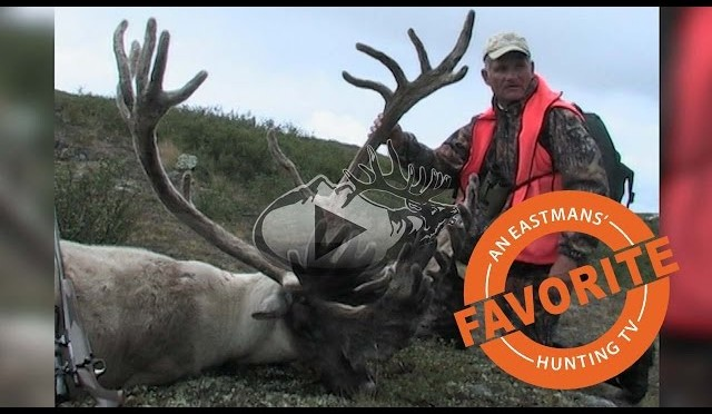 Record Book Trophy Caribou Hunt