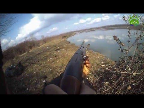 Duck hunting in Azerbaijan (ordek ovu) 2015 – 2016