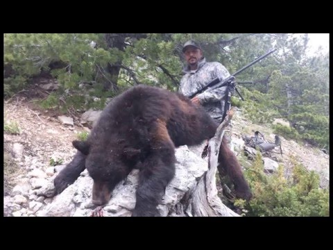 Spring Bear Hunting in Montana – Jeff Hunt – MossBack