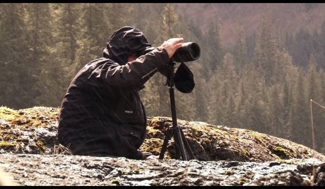 Bear Hunting Trips in Alaska by Parker Guide Service