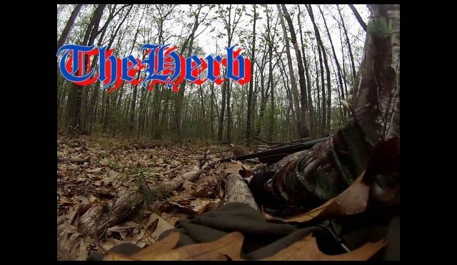 GoPro Turkey Hunting:My First Turkey!!!