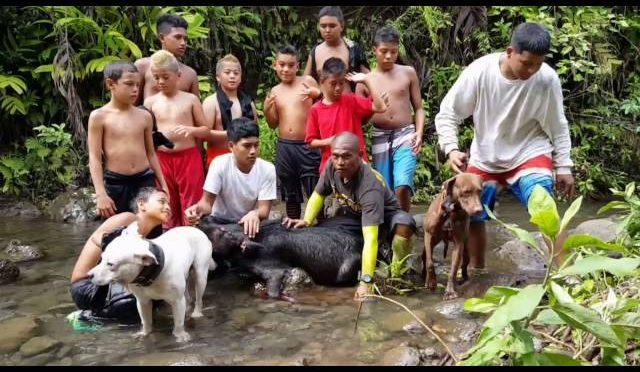 Nanakuli 808 Hunting Hog and Dog