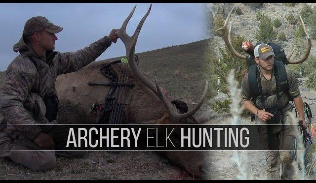 bowhunting elk in montana and idaho trophy elk hunt