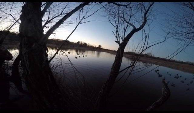 Duck Hunting Public Land