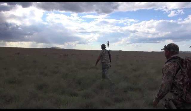 Andrew's Antelope Hunt