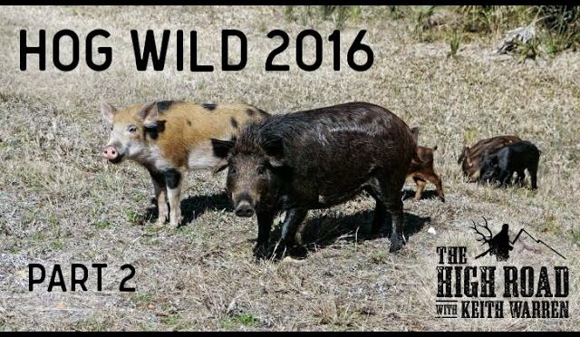Hog Wild 2016 Part 2