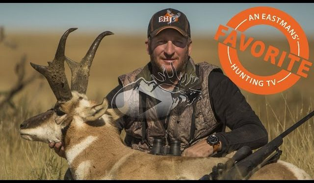 Record Book Antelope Hunt with Guy Eastman