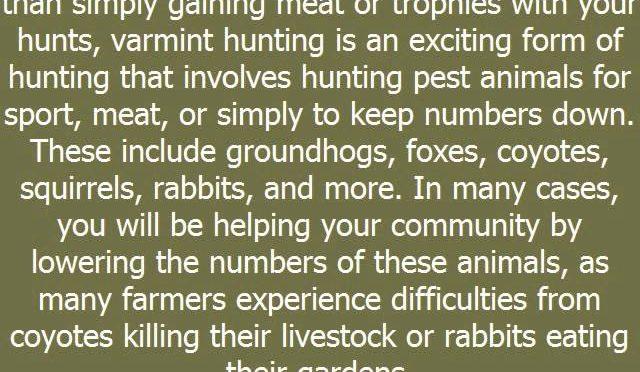 Deer Hunter Tips 10