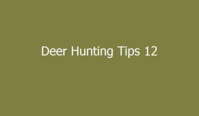 Deer Hunter Tips 12
