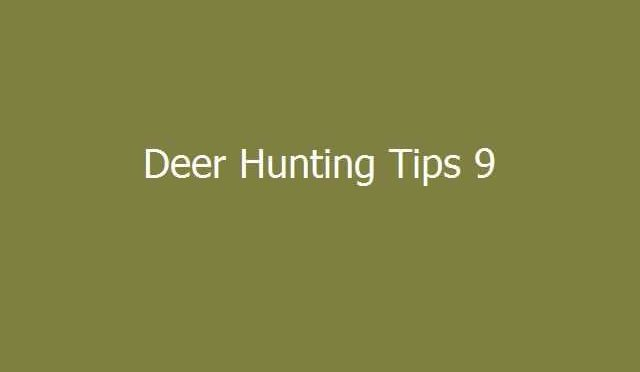 Deer Hunter Tips 9