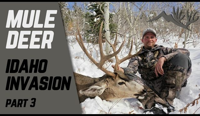 Idaho Invasion Mule Deer Hunt Part 3