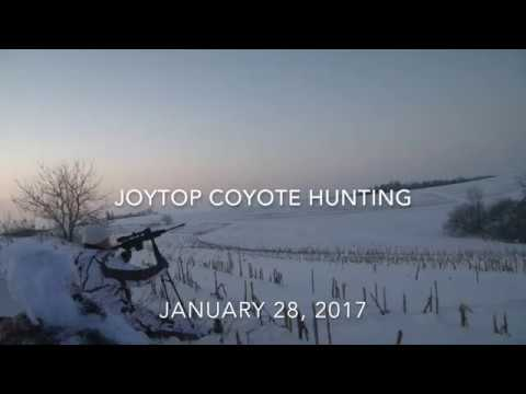 Joy Top Coyote Hunting