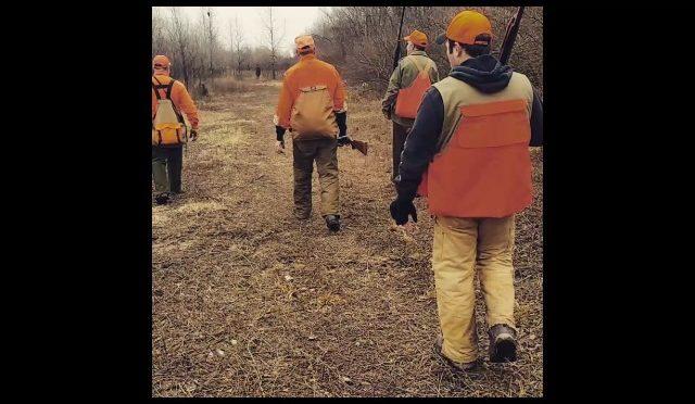 2016 Illinois pheasant season