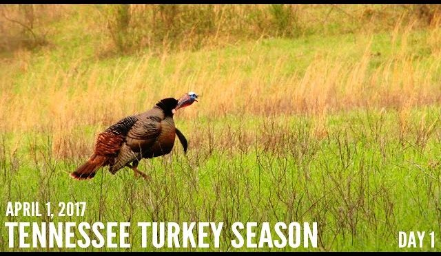 Home - Hunting Season Dates