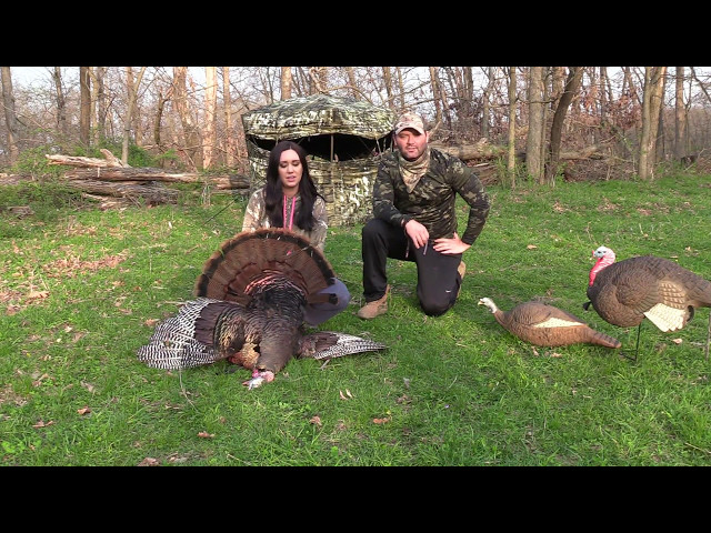 2017 Turkey Hunt Huntingvideoshub Com