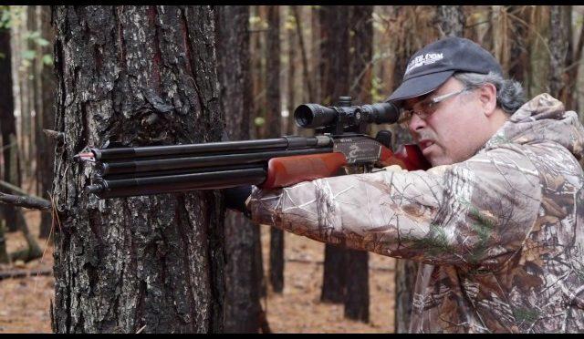 Air Venturi Air Bolt - Wild Hog Hunt - HuntingVideosHub com