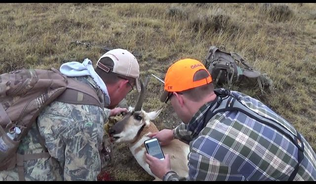 """2017 Antelope Hunt – """"ANOTHER BOLD MOVE"""""""