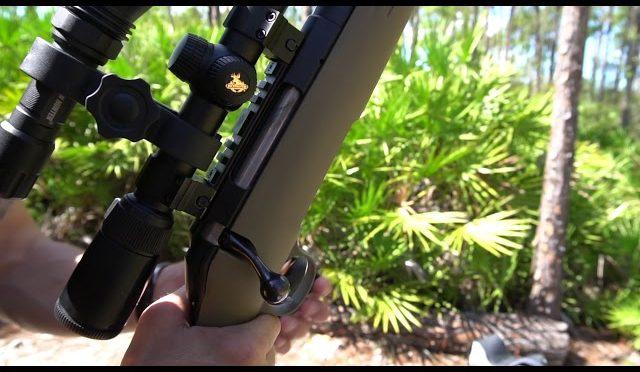 best hog hunting rifle