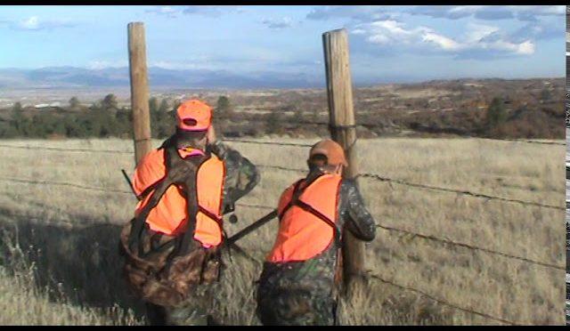 Colorado Cow Elk hunt – Johnny Boom-Boom