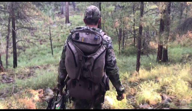 Opening Day: 2017 AZ Archery Bull Elk Hunt