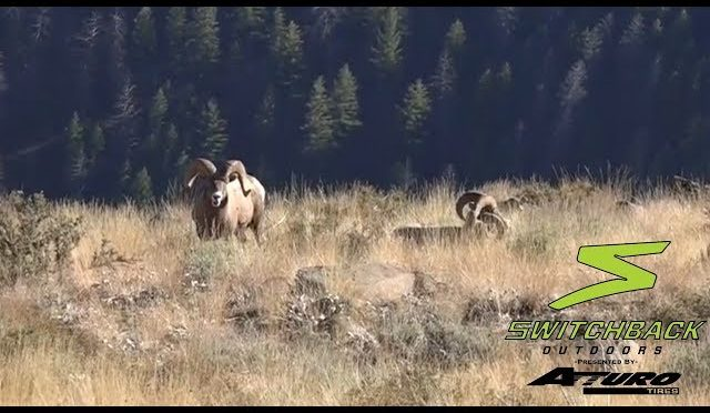 2017 Idaho Backcountry Deer/Elk Hunt-Part 2